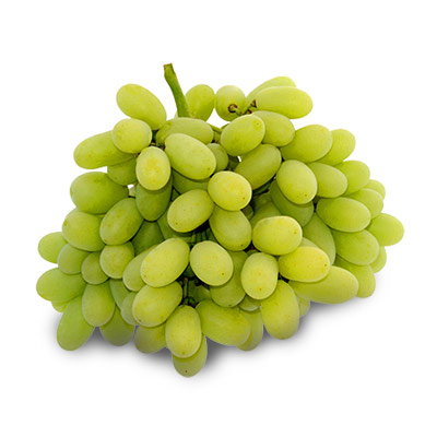 bunch of vignoles grapes