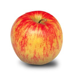 jonagold apple
