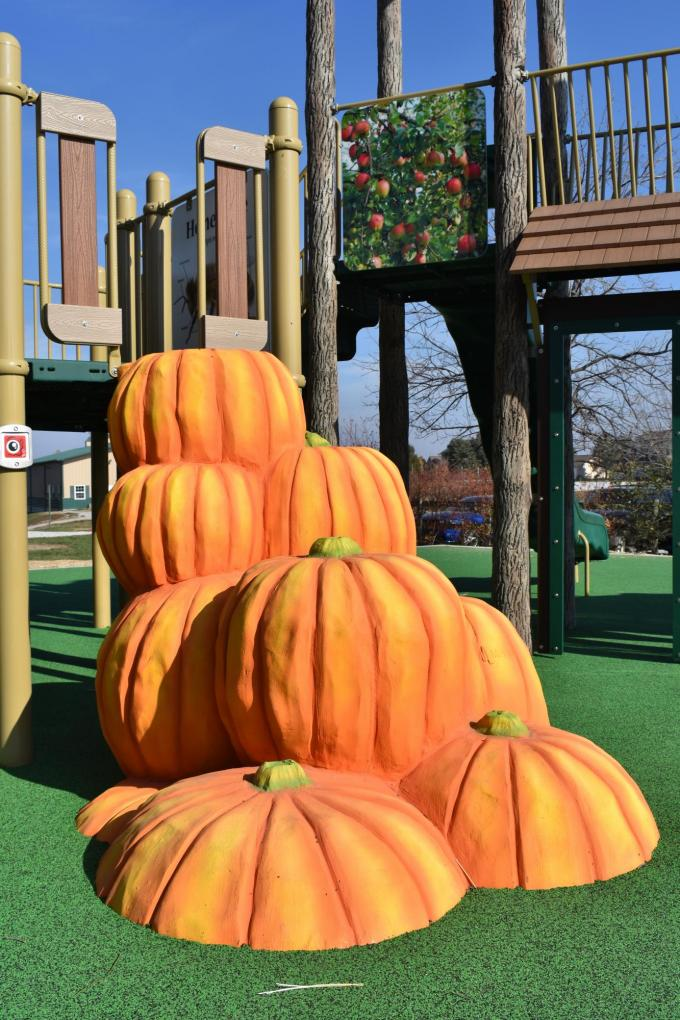 playground pumpkin steps
